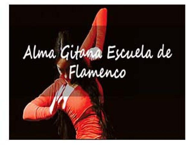 ALMA GITANA ESCUELA DE FLAMENCO